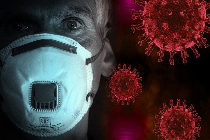 Coronavirus SARS-CoV2 Covid-19