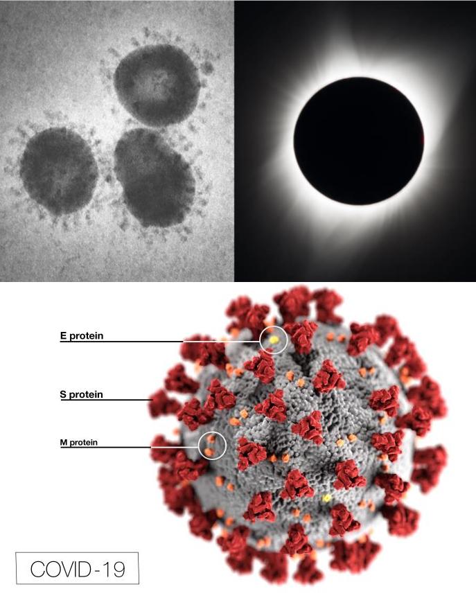 Comparación de coronavirus y una fotografía de la corona solar. partes de un coronavirus.